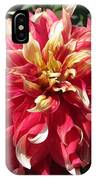 Dahlia Named Bodacious IPhone Case