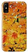 Fall Colors 2014-3 IPhone Case