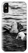 flock of southern giant petrels one showing sealmaster agressive feeding posture in port lockroy Ant IPhone Case