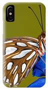 Gulf Fritillary Butterfly IPhone Case