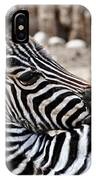 Idaho Falls - Tautphaus Park Zoo IPhone Case