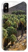 Indian Canyons - California IPhone Case