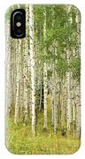 Into The Trees IPhone Case