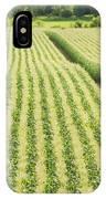 Late Summer Corn Field In Maine IPhone Case