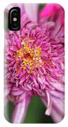 Marguerite Daisy Named Summer Song Rose IPhone Case