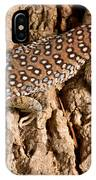 Ocellated Lizard Timon Lepidus IPhone Case