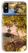 Over-under Split Shot Of Clear Water In Tidal Pool IPhone Case
