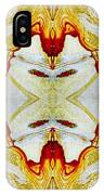 Patterns In Stone - 150 IPhone Case