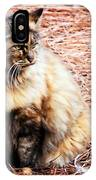 Pine Needle Kitty IPhone Case