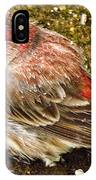 Snow Bird IPhone Case