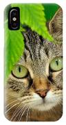 Stray Cat Portarit IPhone Case