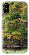 Tennessee Autumn Stream IPhone Case