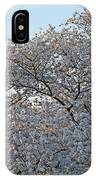 The Simple Elegance Of Cherry Blossom Trees IPhone Case