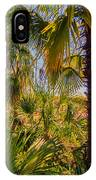Tropical Forest Palm Trees In Sunlight IPhone Case