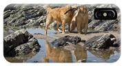Two Golden Retrievers Playing IPhone X Case