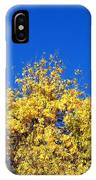 Yellow Autumn Tree IPhone Case