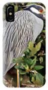Yellow Crowned Night Heron IPhone Case