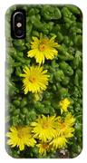 Yellow Ice Plant In Bloom IPhone Case