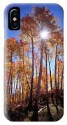 California, Sierra Nevada Mountains IPhone Case