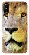 Lion Dafrique Panthera Leo IPhone Case