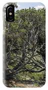 201407250-089 Capulin-bare-trees IPhone Case