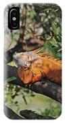 25- Iguanas IPhone Case