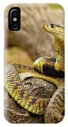 African Snakes IPhone Case