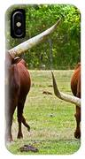 Ankole-watusi Cattle IPhone Case