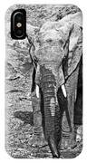 At The Waterhole IPhone Case
