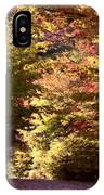 Autumn Colors And Road  IPhone Case