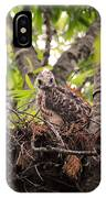 Baby Red Shouldered Hawk In Nest IPhone Case