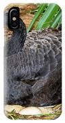 Black Swan At Nest IPhone Case