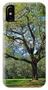 Bok Tower Gardens Oak Tree IPhone Case