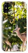 3 Bucks Caught In A Orchard IPhone Case