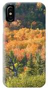 Colorful Fall Forest Near Rangeley Maine IPhone Case