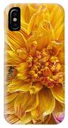 Dahlia Named Lambada IPhone Case