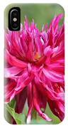 Dahlia Named Normandy Wild Willie IPhone Case