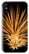 Fireworks IPhone Case