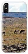 3 Horses At 4 Corners IPhone Case