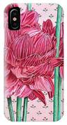 JAN IPhone Case