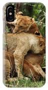 Lion Cubs On The Masai Mara  IPhone Case