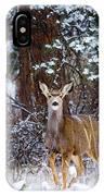 Mule Deer In Snow IPhone Case