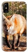 Red Fox In Prospect Park IPhone Case