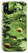 Russian Silverberry Leaf Sem IPhone Case