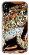 Southern Toad Bufo Terrestris IPhone Case