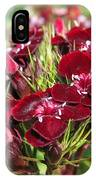 Sweet William Named Sooty IPhone Case