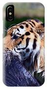 Tiger Playing IPhone Case