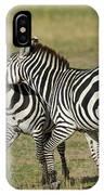 Zebra Males Fighting IPhone Case