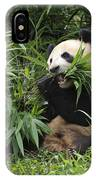 Giant Panda IPhone Case