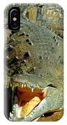 American Crocodile IPhone Case